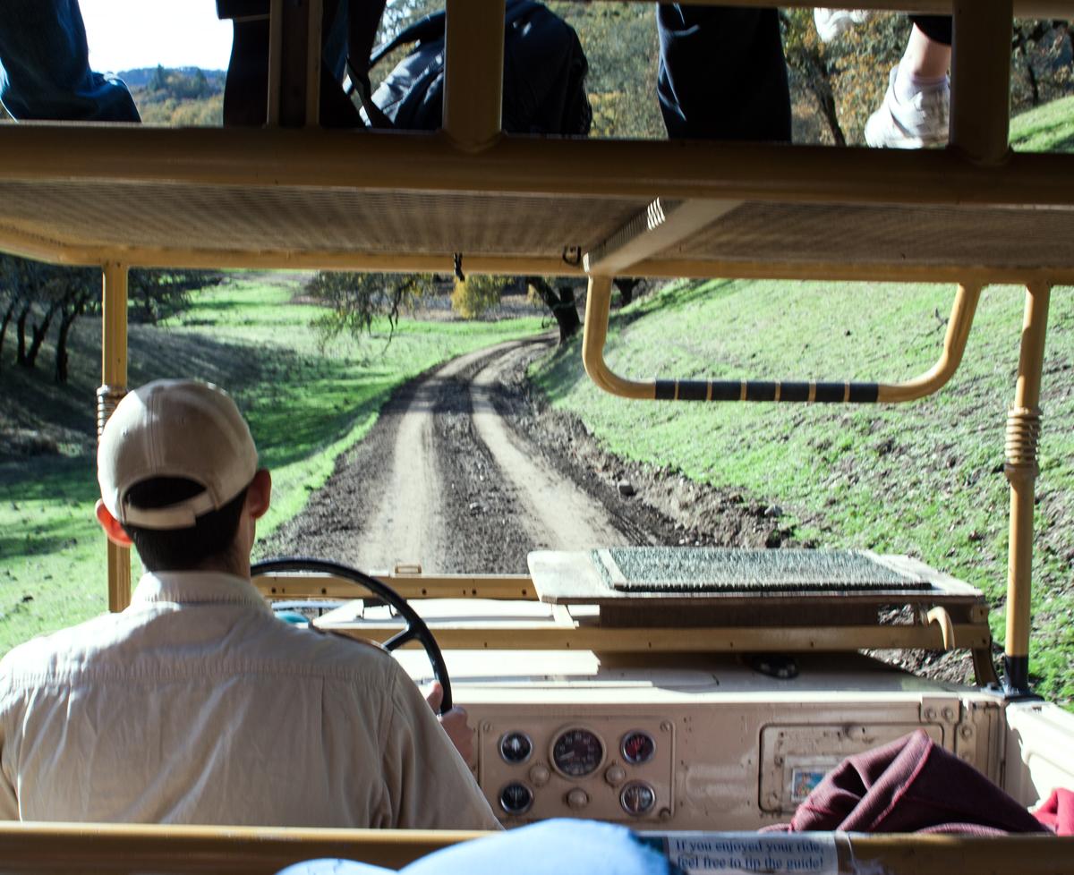 safari_west2